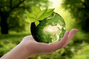 Environmental Consulting in South Africa